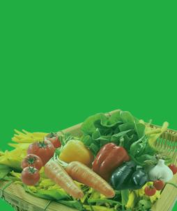 惠州蔬菜配送