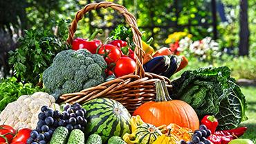 惠州食材配送教你分辨有机蔬菜与普通蔬菜