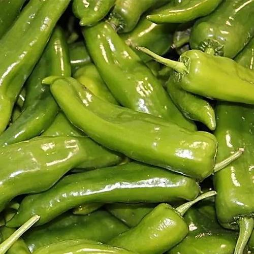 深圳蔬菜配送