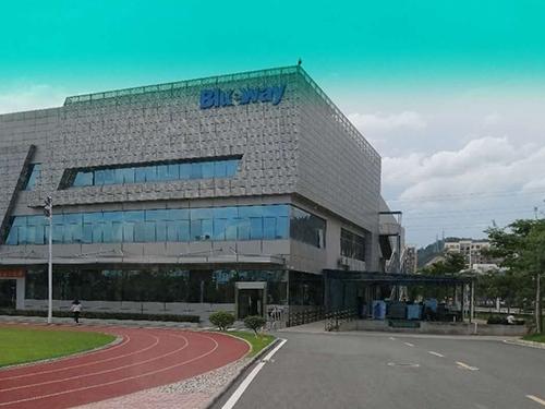 惠州市蓝微电子有限公司